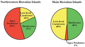 Credit: adapted from Gulko and Maragos, Coral Reef Ecosystems of the Northwestern Hawaiian Islands