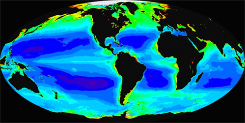 Figure 5. Global distribution of chlorophyll (the oceanographers index for phytoplankton or plant abundance) gathered from the first 6 years (September 1997-September 2003) of the SeaWiFS satellite sensor. Red, yellow and green represent high levels, and blue and purple are low levels.
